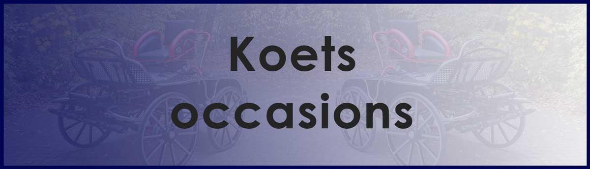 occasions-koetsen-en-marathonwagens gelderland